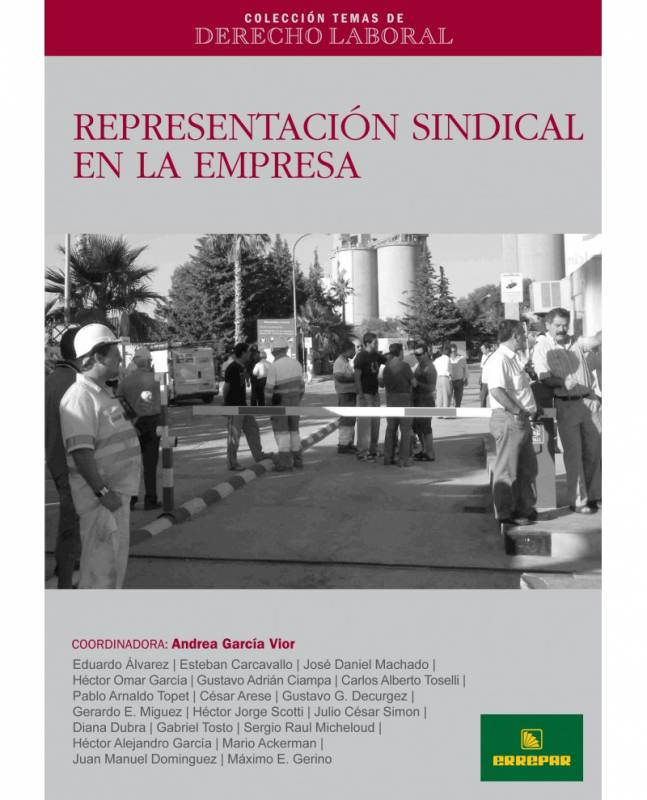 CTDL N° 6: REPRESENTACIÓN SINDICAL EN LA EMPRESA